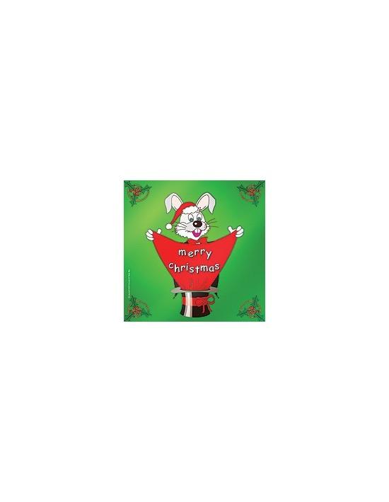 Pañuelo de seda feliz navidad 45 cm VDF Magic Juegos y Varios