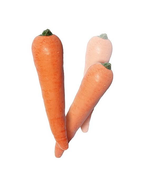 Multiplicación de zanahorias (látex) VDF Magic Látex